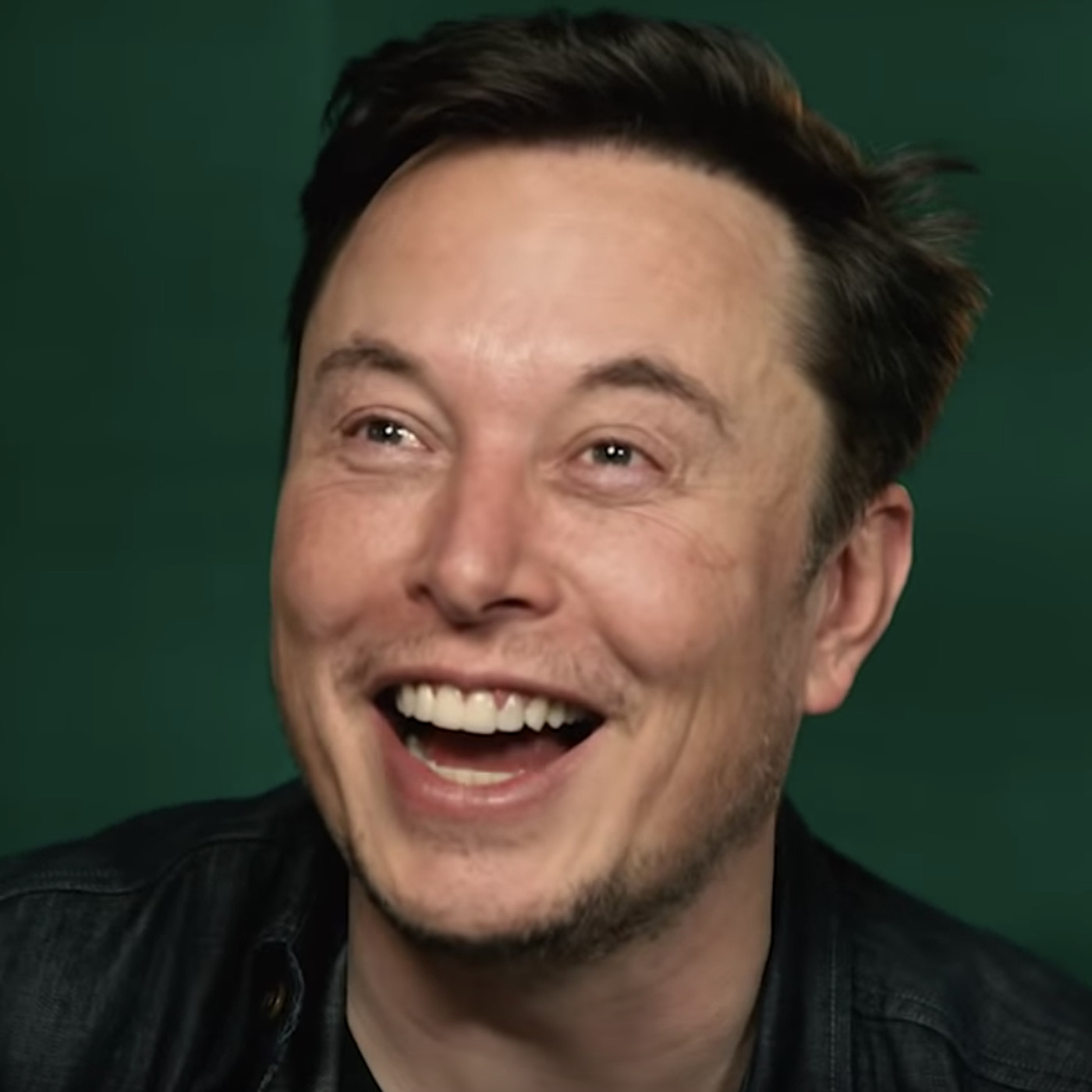 Elon Musk Puoliso