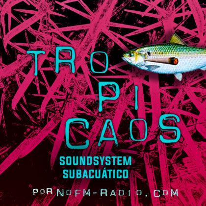 Soundsystem subacuático